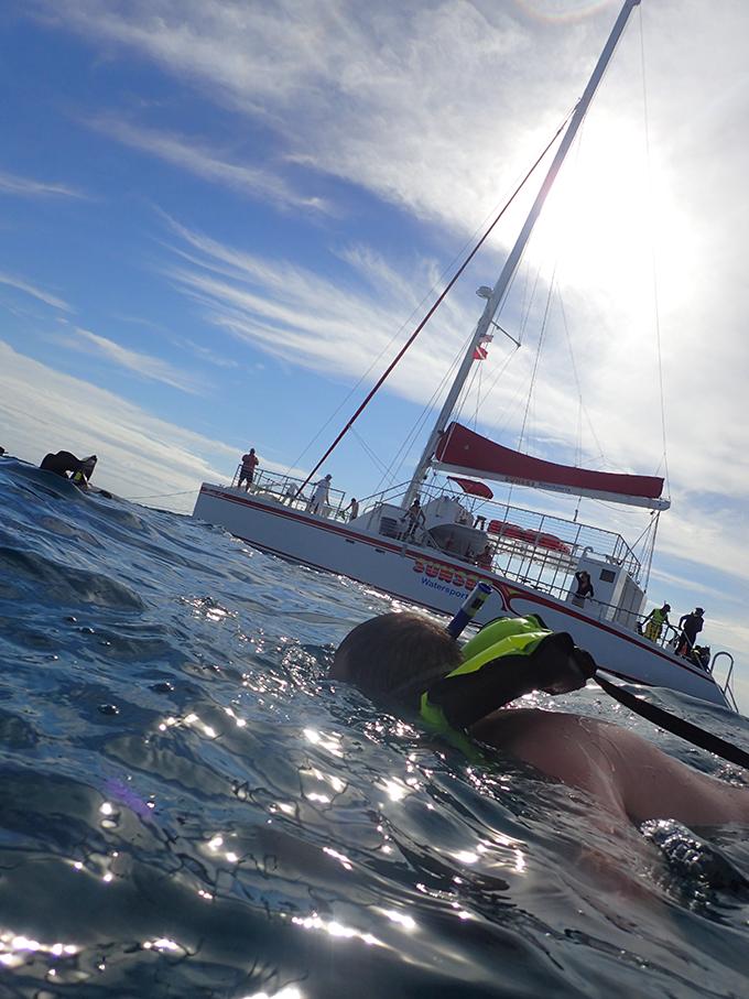 key_west_snorkeling