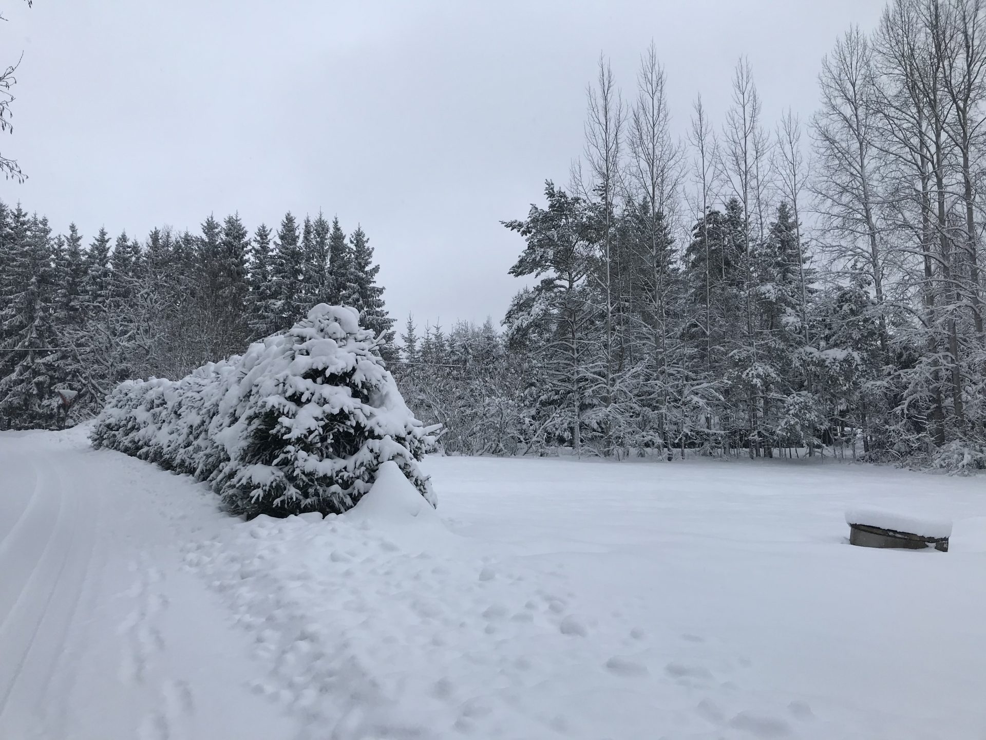 Very wintry greetings from Finland