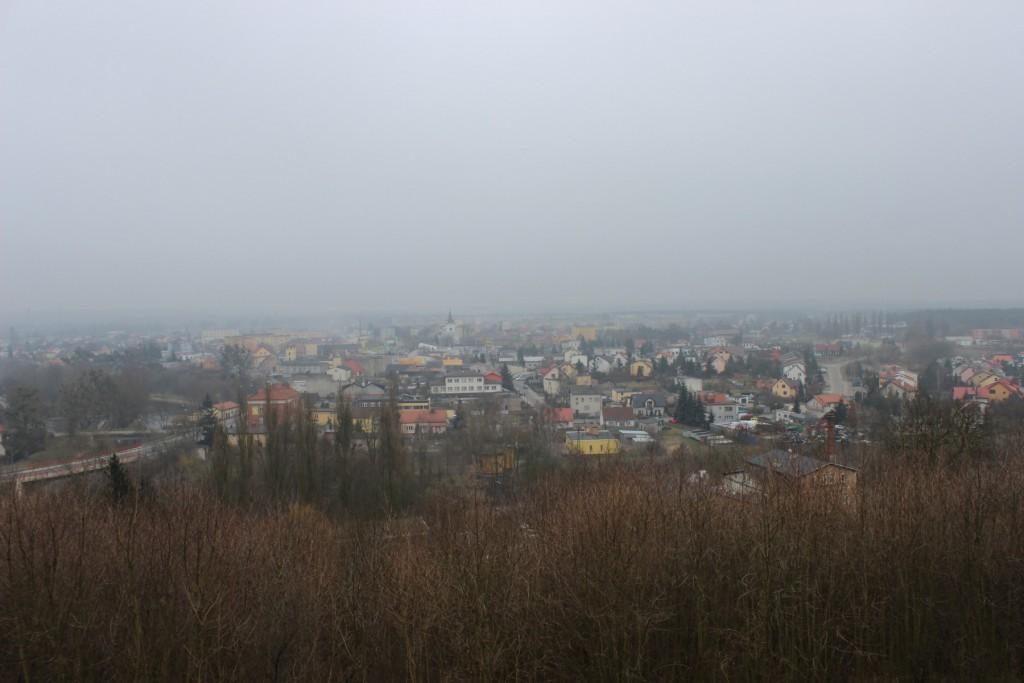 golub-dobrzyn3