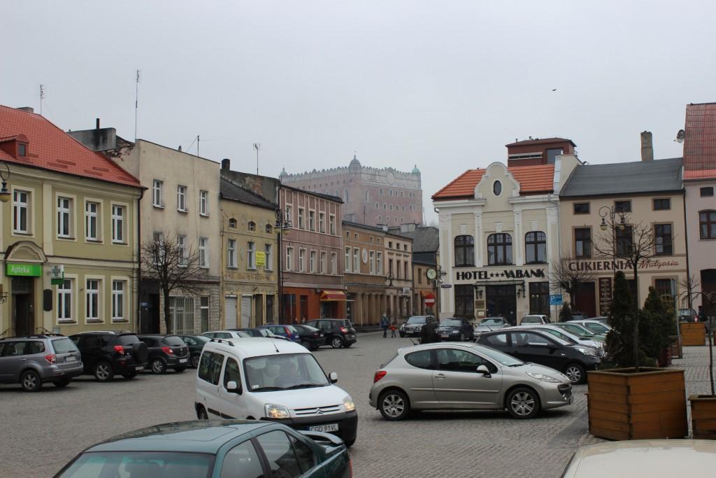 golub-dobrzyn7