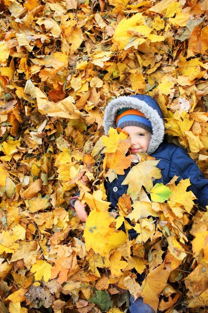 autumn-1013982_1280