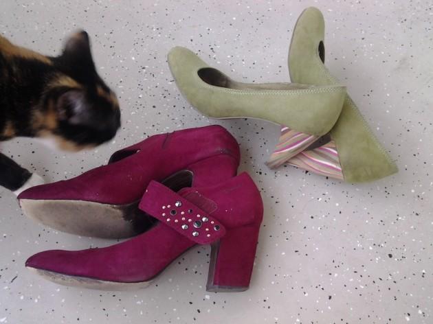 Kauniita kenkiä ja linssikissa Ninni. Vihreät olivat ensimmäiset Tallinnasta ostetut ja varastossa yhä vielä nelisen vuotta myöhemmin. Punaiset käveltiin loppuun Matkamessuilla toissatalvena.