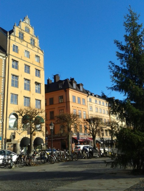 Onko tällainen auringonpaiste muka mahdollista marraskuussa? No on se tänä vuonna Suomessakin nähty, eikä tämäkään ollut Tukholmaa kummempi etelänloma.