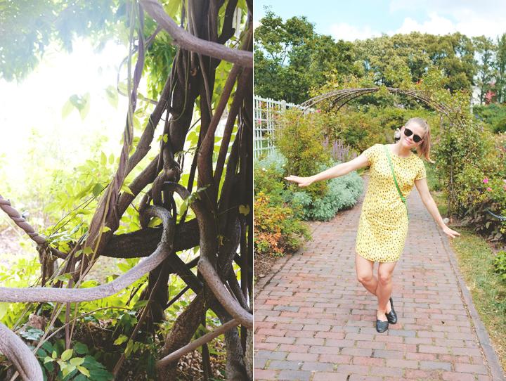 Brooklyn Botanical Gardens (2)