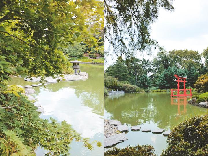 Brooklyn Botanical Gardens (3)