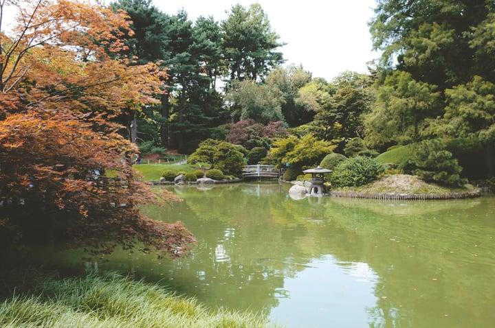 Brooklyn Botanical Gardens (7)