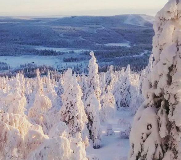 Suomen talvi-5