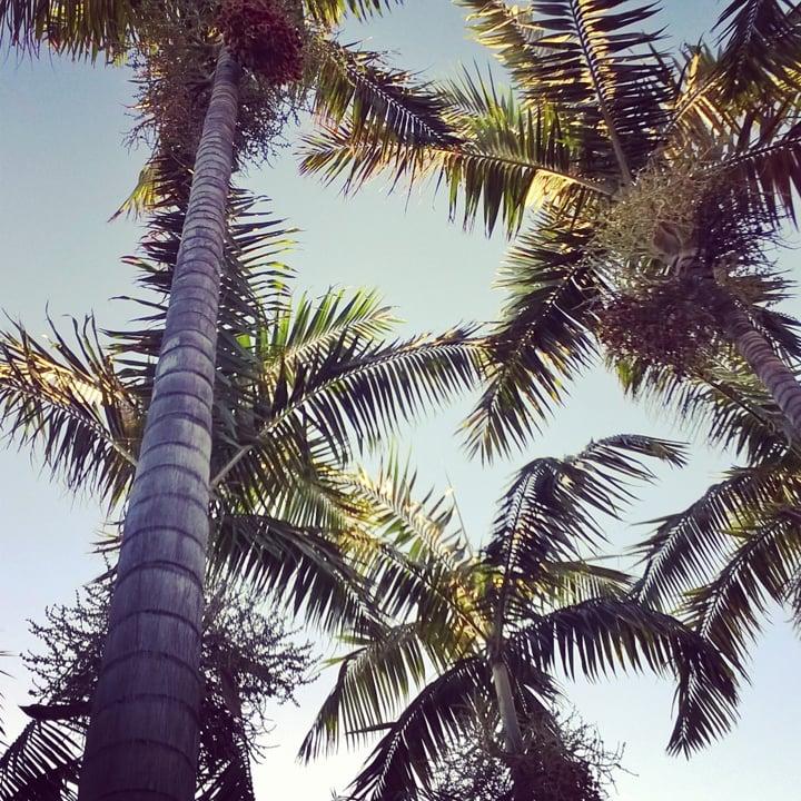 cancun (11)
