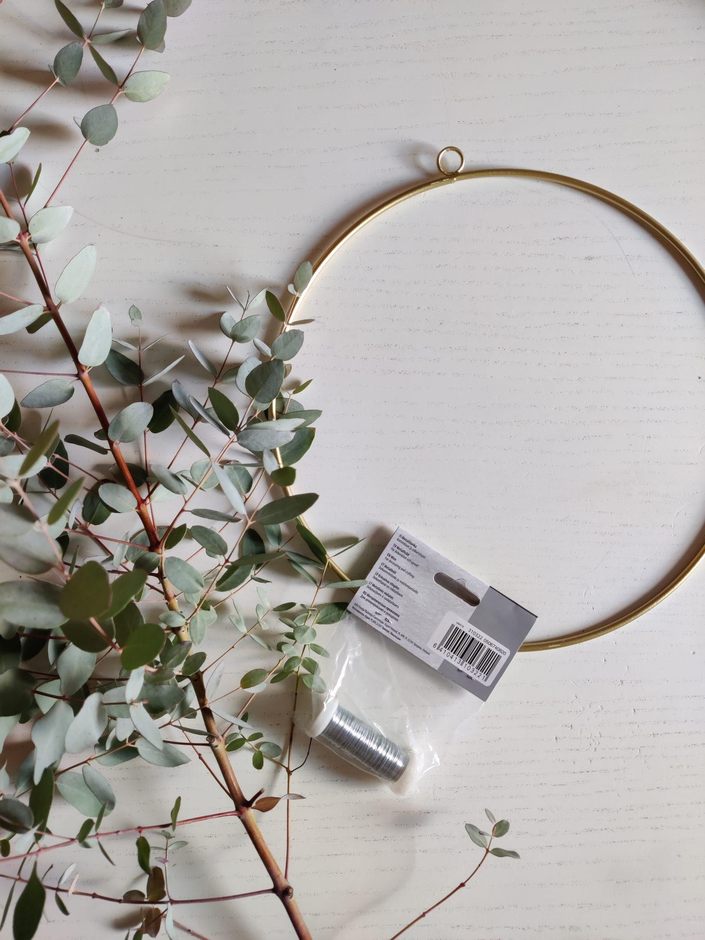 Eucalyptus kranssi