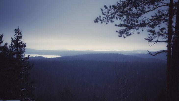 Metsää vuorelta katsottuna lumisateen aikana