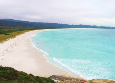 Bay of Fires ja Tamar Valleyn viinitilat