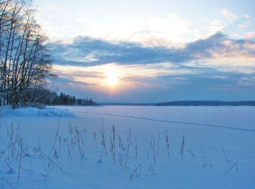 Tuhlaajatytön paluu Suomeen