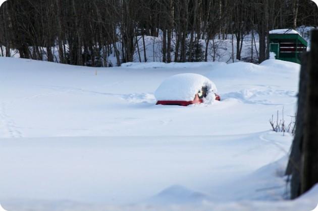 Lumikinoksia Norjassa