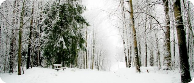 Talvinen Tampere