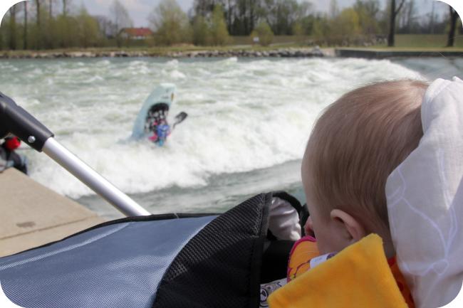 Mini seuraa surffailua