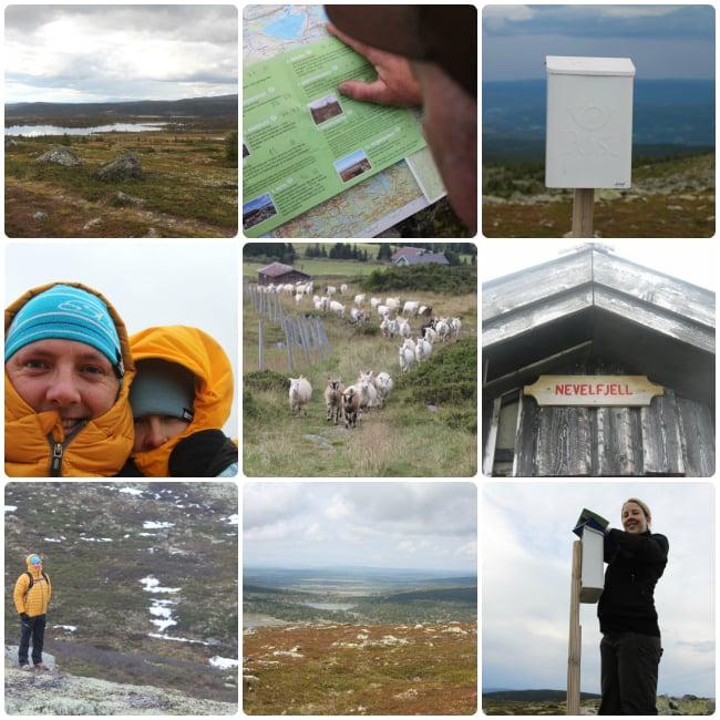 Vuoria valloittamassa Norjassa