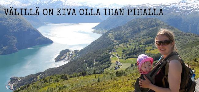 Versatile Blogger Pihalla