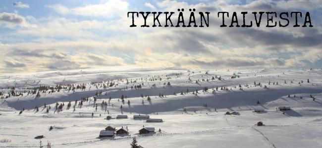 Versatile Blogger Tykkaan talvesta