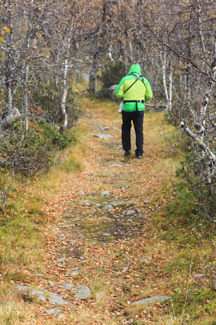 Metsäretkellä Norjassa I @SatuVW I Destination Unknown