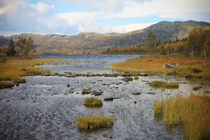 Furusjøen Norjassa I @SatuVW I Destination Unknown