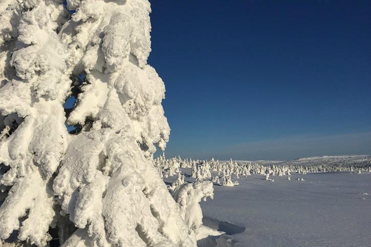 Talvimaisemia Norjasta I @SatuVW I Destination Unknown