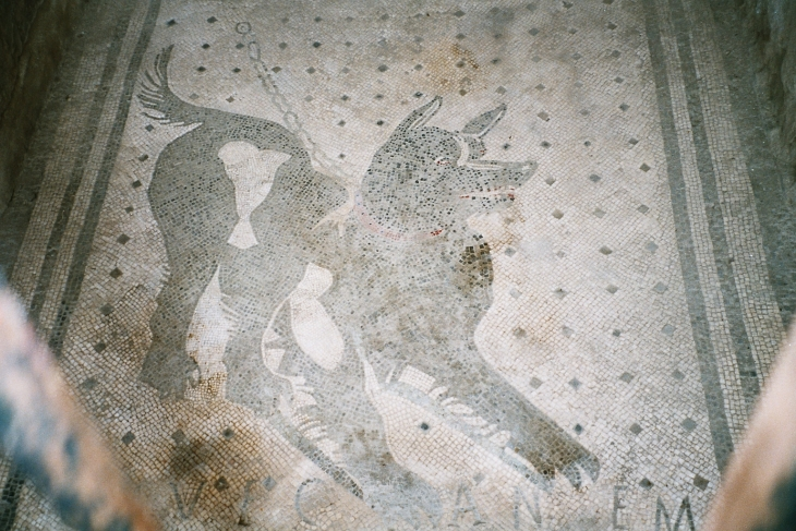 Mosaiikki varoituksella vartioivasta koirasta 'Cave Canem' @Casa del Poeta Tragico. Photo copyright Elämää ja Matkoja