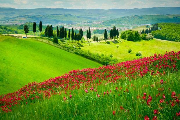 Toscanassa matkataan postikorttimaisemissa photo: Italy Magazine