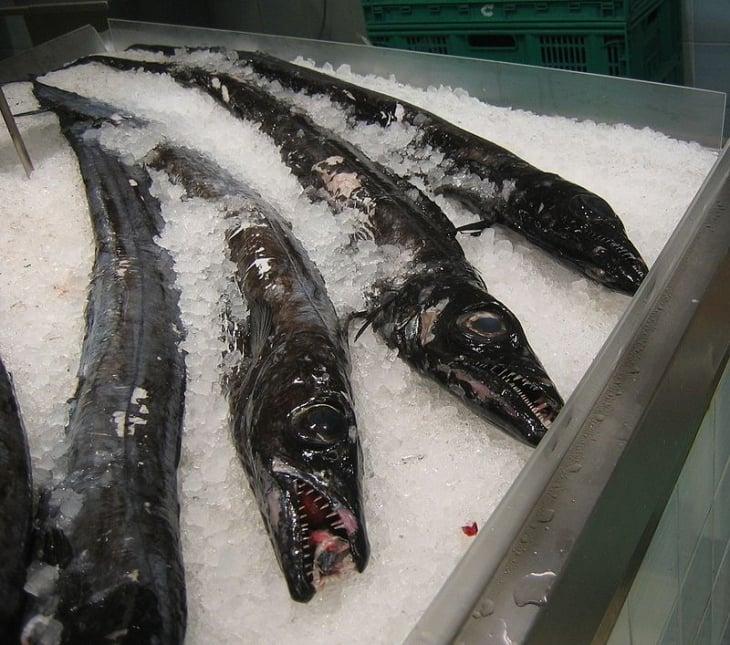 Espadaa Madeiran kauppahallissa. kuva wikipedia.fi