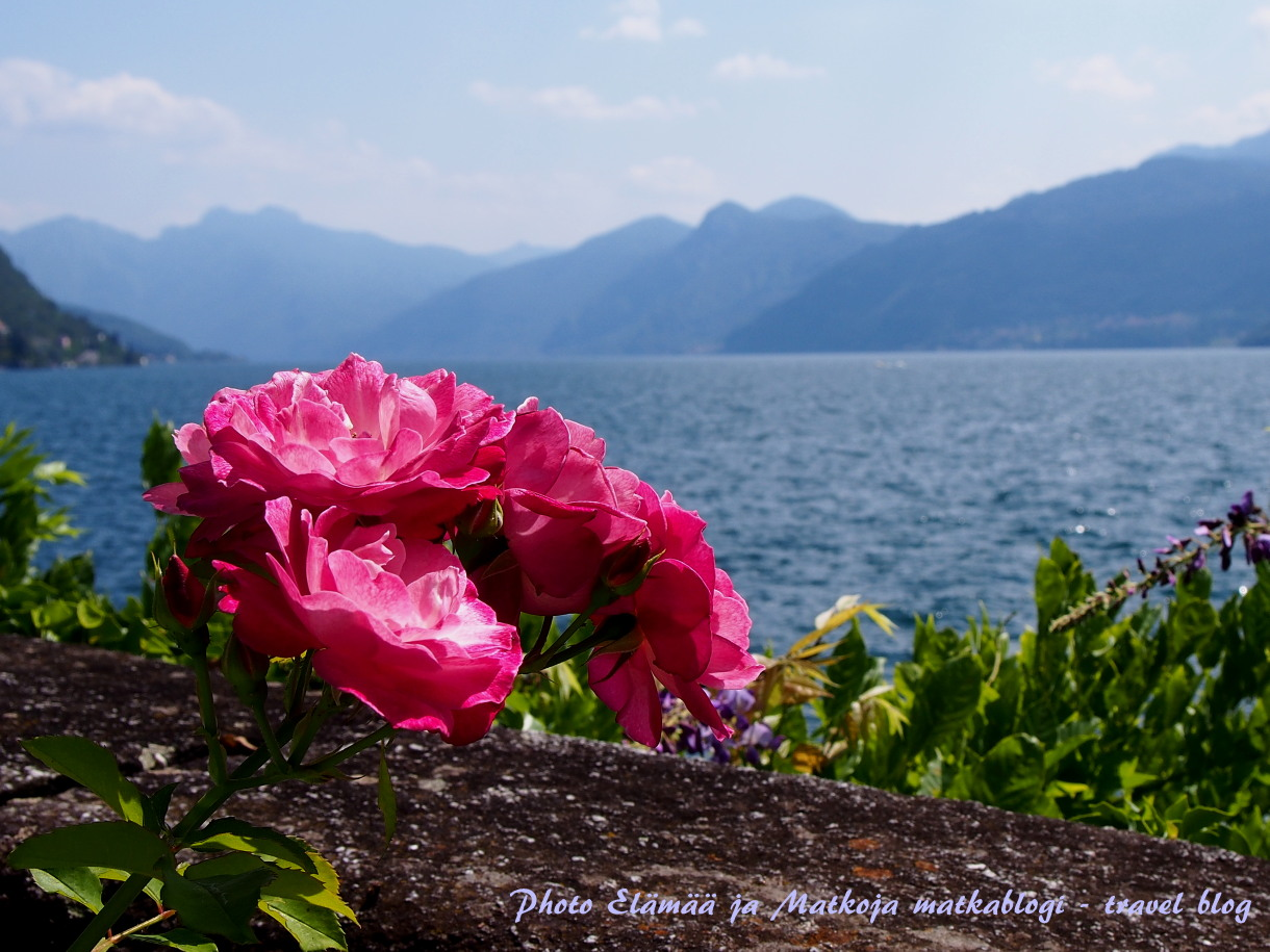 1. Comojärven kauneutta