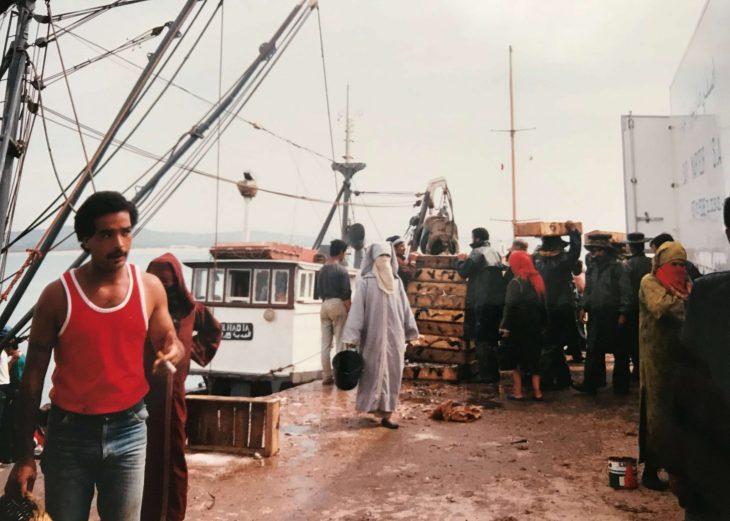Marokko Essaouira nähtävää kalasatama