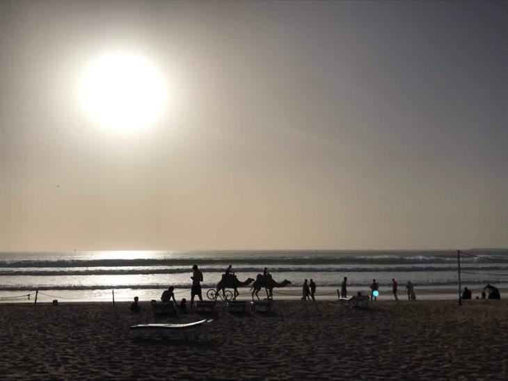 Marokko Agadir nähtävää: ranta ja kameleita ilta-aikaan