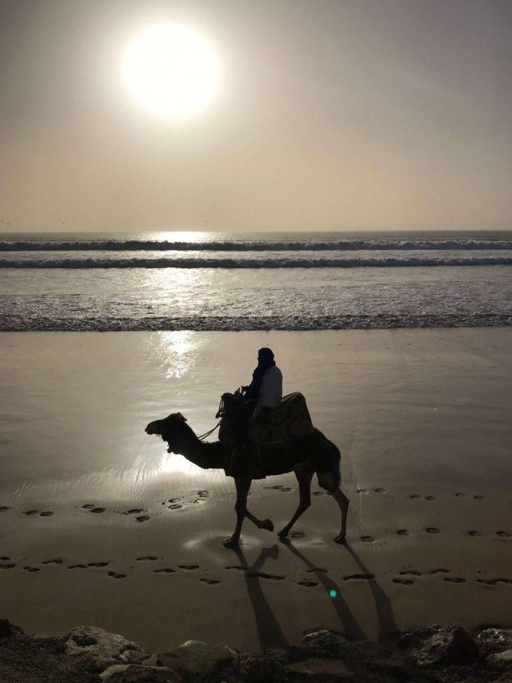 Marokko Agadir nähtävää: ranta auringonlaskun aikaan, kameliratsastus