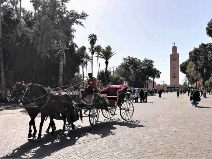 Hevosvankkurit Djemaa el Fna Koutoubian edustalla, Marokko kokemukia vanha kaupunki