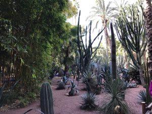 Marokko Marrakech medina nahtavaa Majorelle puutarha YSL Yves Saint Laurent