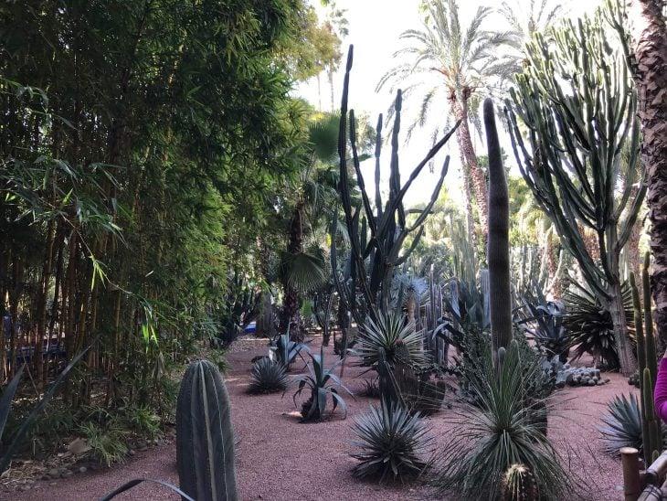 Marokko Marrakech medina nahtavaa Majorelle puutarha YSL Yves Saint Laurent, kokemukia vanha kaupunki