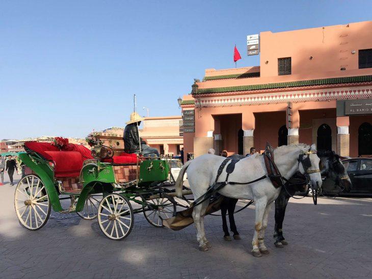 Marokko Marrakech nahtavaa Medina hevoskyydilla, kokemuksia vanha kaupunki