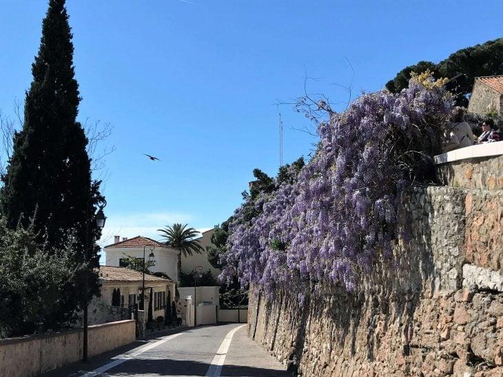 Ranskan Riviera nähtävää, Cannes vanhaa kaupunkia Le Suquet, kokemuksia