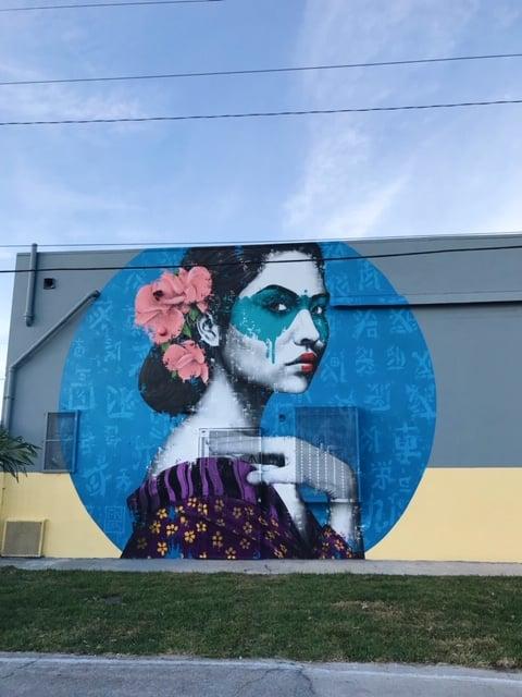 Florida Miami Wynwood nahtavaa taidetta, muraalit ja graffitit