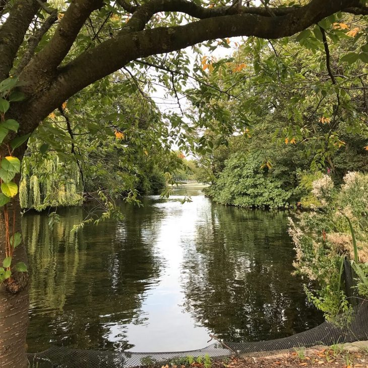 Lontoo ilmaisia nähtävyyksiä ja kokemuksia - Lontoo St James Park