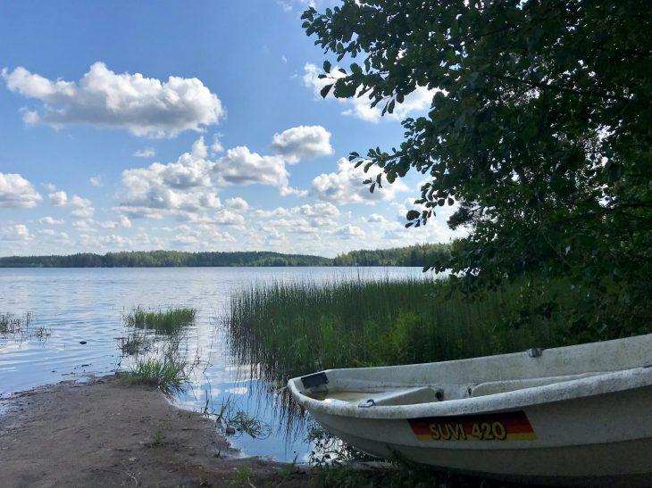 Savojärvi, Kurjenrahka