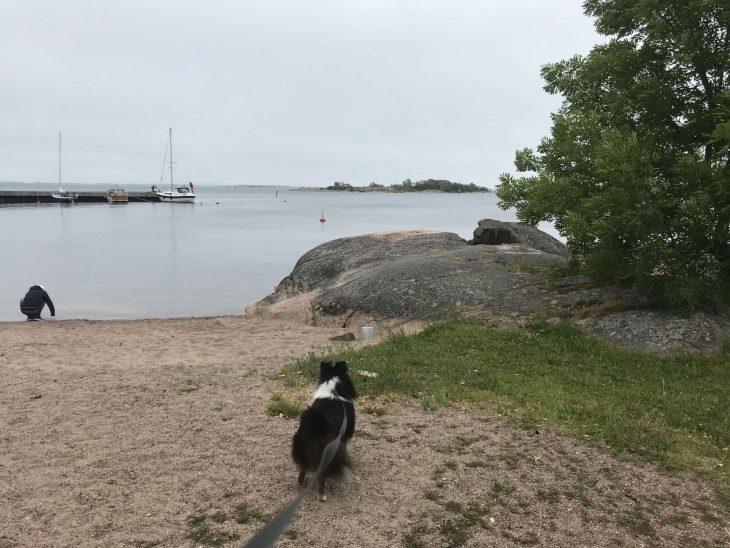 Ahvenanmaan saaristokierroksella, Brandö, matkailu, matkablogi, korona