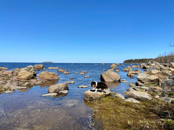 Västerö vaellusreitti Merenkurkun saaristo, kivistä rantaa