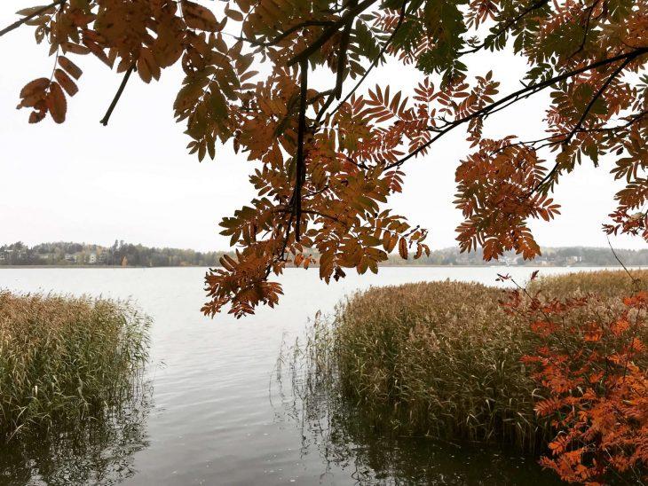 Katariinanlaakso luontopolku Turku luontokohde syksy ruska