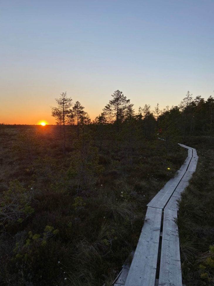 Suolla auringonlaskun aikaan pitkospuut luontopolku Huittinen Rahgamo Resort