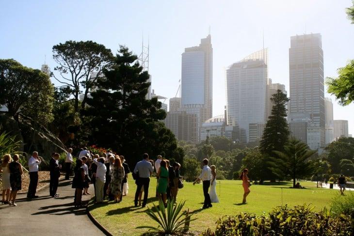 Sydneyn siluettia Royal Botanic Gardenista