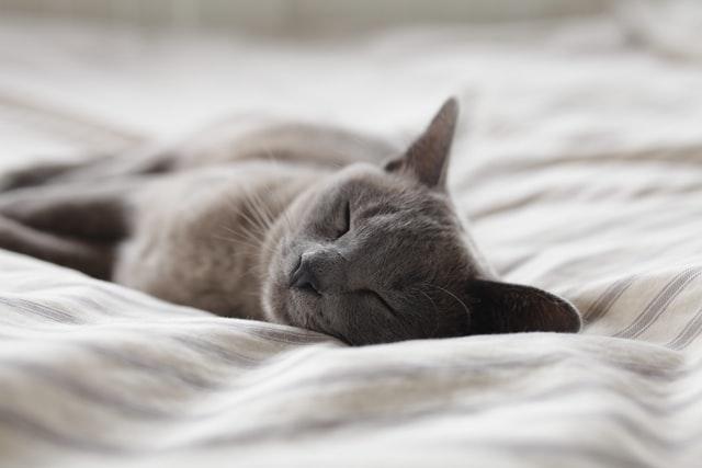 Riittävä uni on tärkeää