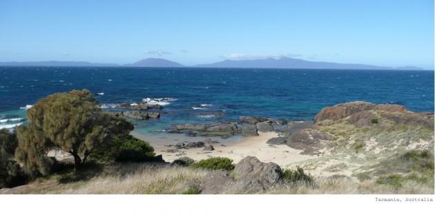 Banner-Tasmania.jpg