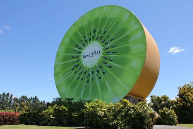 """Famous Giant Kiwi"". (Kuva: www.kiwi360.com)"