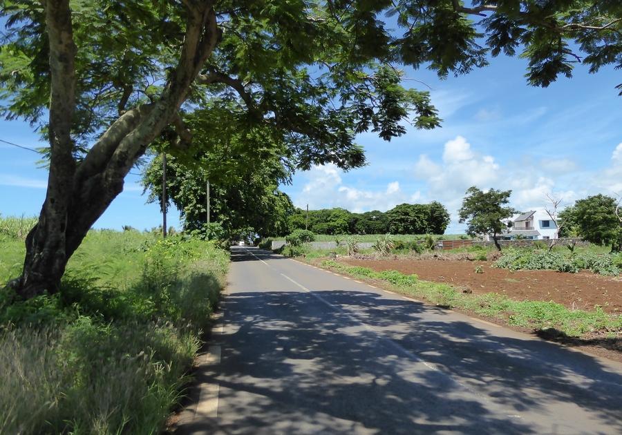 160317_Mauritius_3