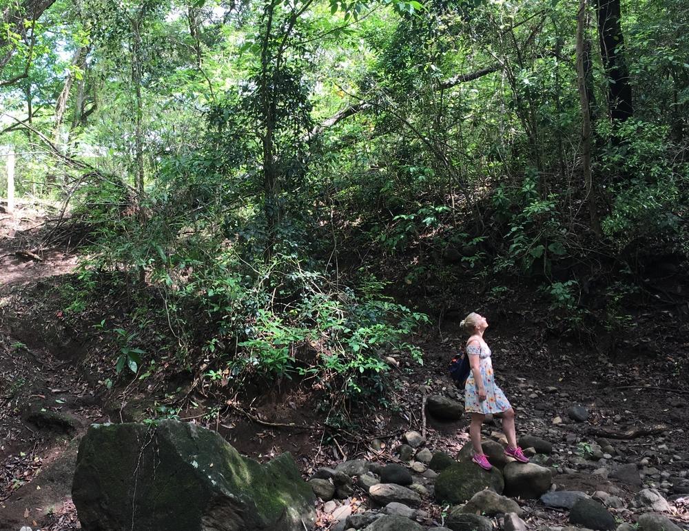 Päivä 188, La Cruz (Costa Rica)